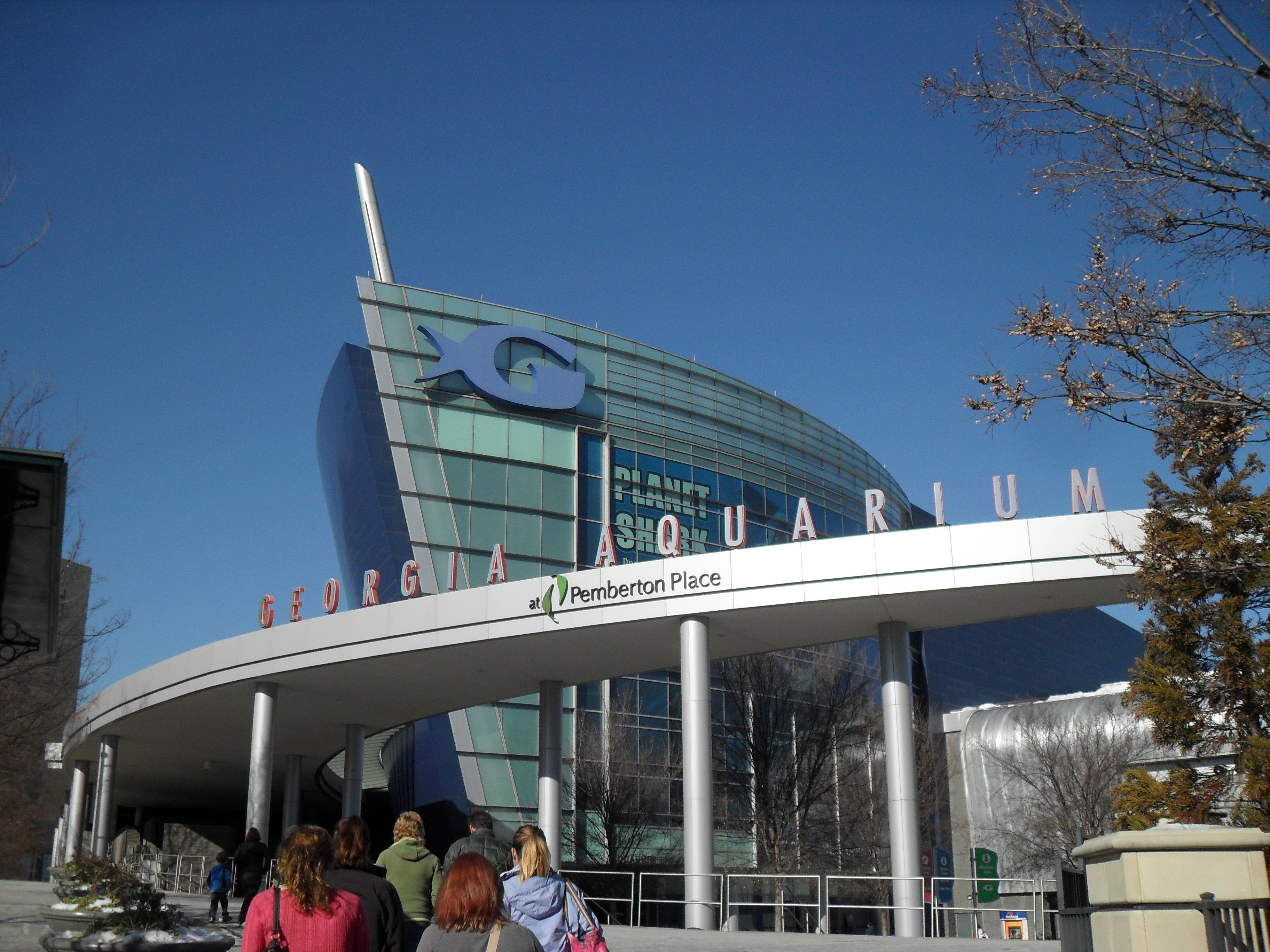 Aquariums Rebecca Heisman