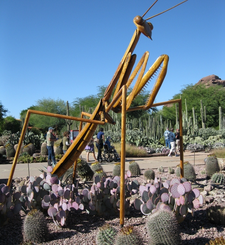 The praying mantis - my favorite! - guards the entrance to the gardens.