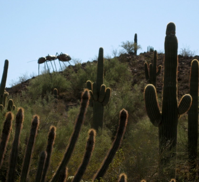 A giant ant appears dramatically over a desert ridge - anyone seem the movie Them?