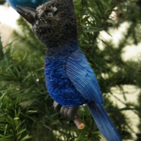 Not Hallmark - this Stellar's Jay from a gift shop in Yosemite National Park is one of my favorites.