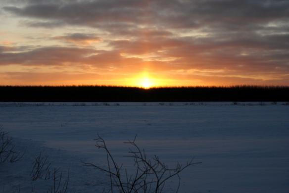 Sunrise over Sax-Zim.