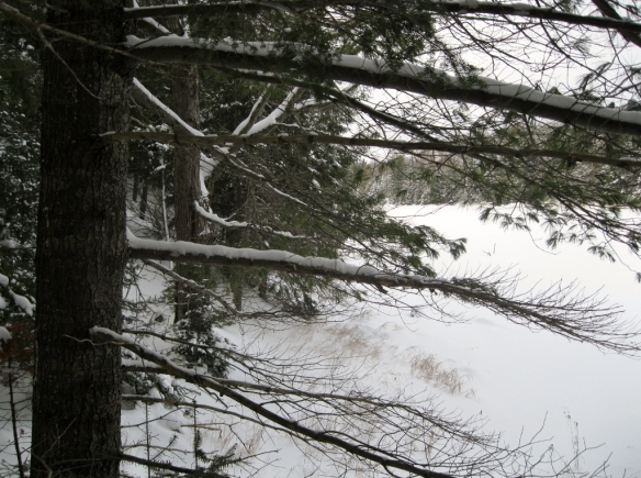 Looking out across the snowy lake.